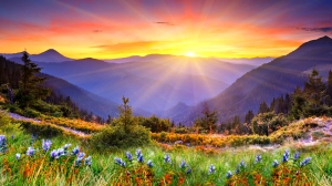 6776635-beautiful-sunrise-wallpaper